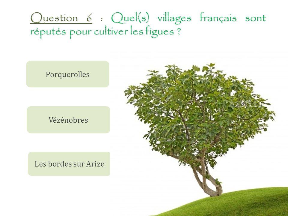 Question 6 : Quel(s) villages français sont réputés pour cultiver les figues