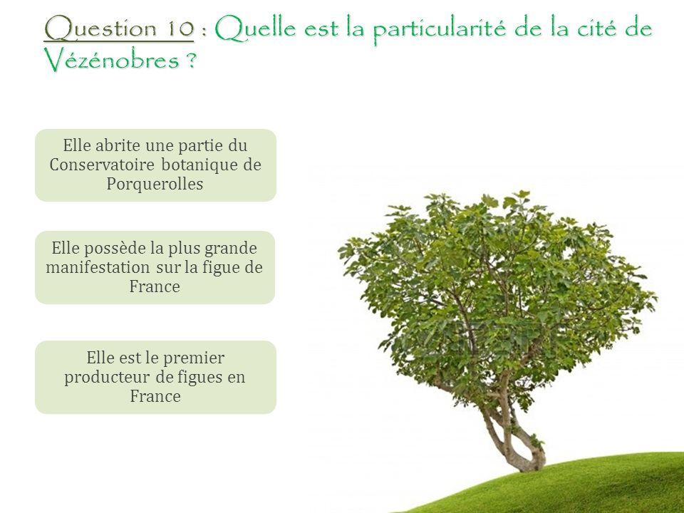 Question 10 : Quelle est la particularité de la cité de Vézénobres
