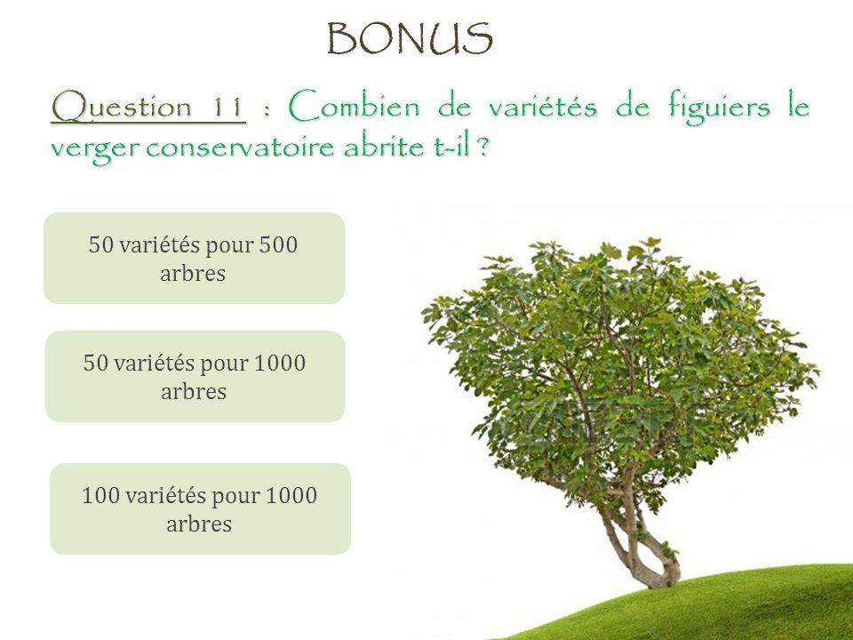 BONUS Question 11 : Combien de variétés de figuiers le verger conservatoire abrite t-il 50 variétés pour 500 arbres.