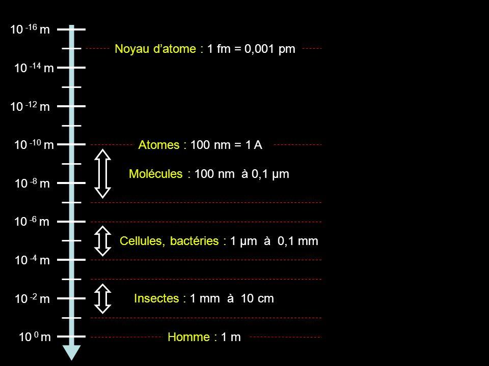 10 -16 m Noyau d'atome : 1 fm = 0,001 pm. 10 -14 m. 10 -12 m. 10 -10 m. Atomes : 100 nm = 1 A. Molécules : 100 nm à 0,1 µm.