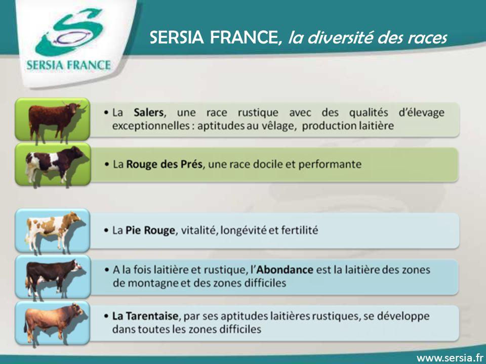 SERSIA FRANCE, la diversité des races