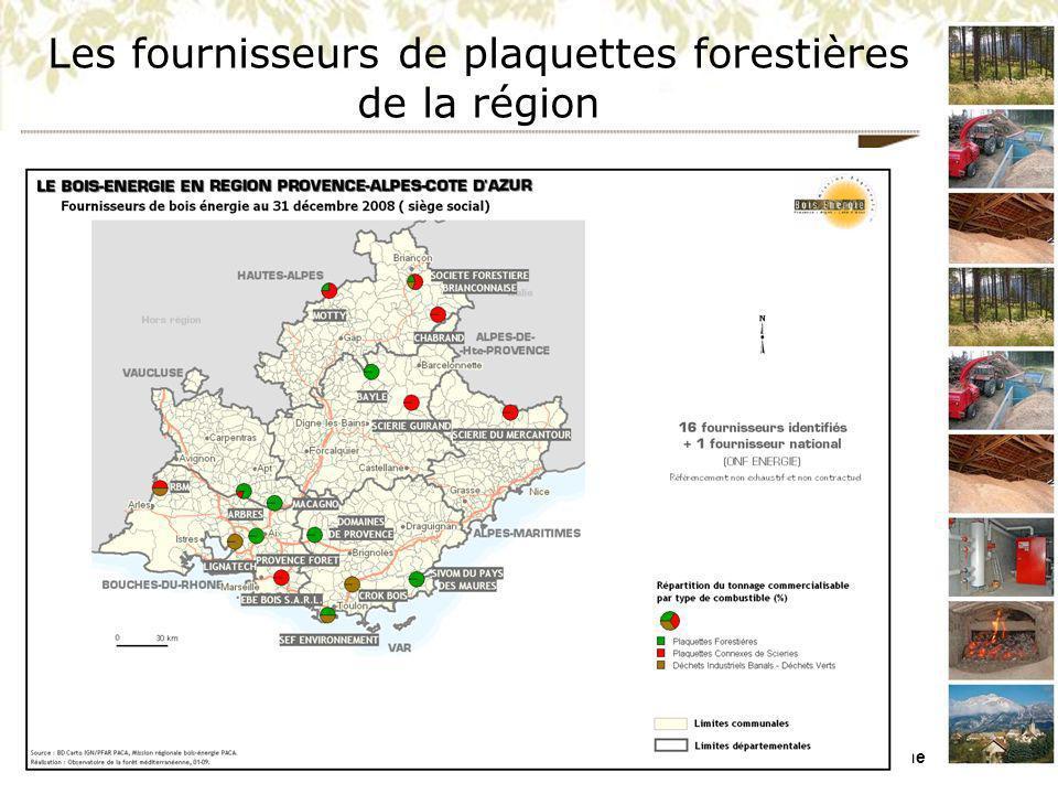 Les fournisseurs de plaquettes forestières de la région