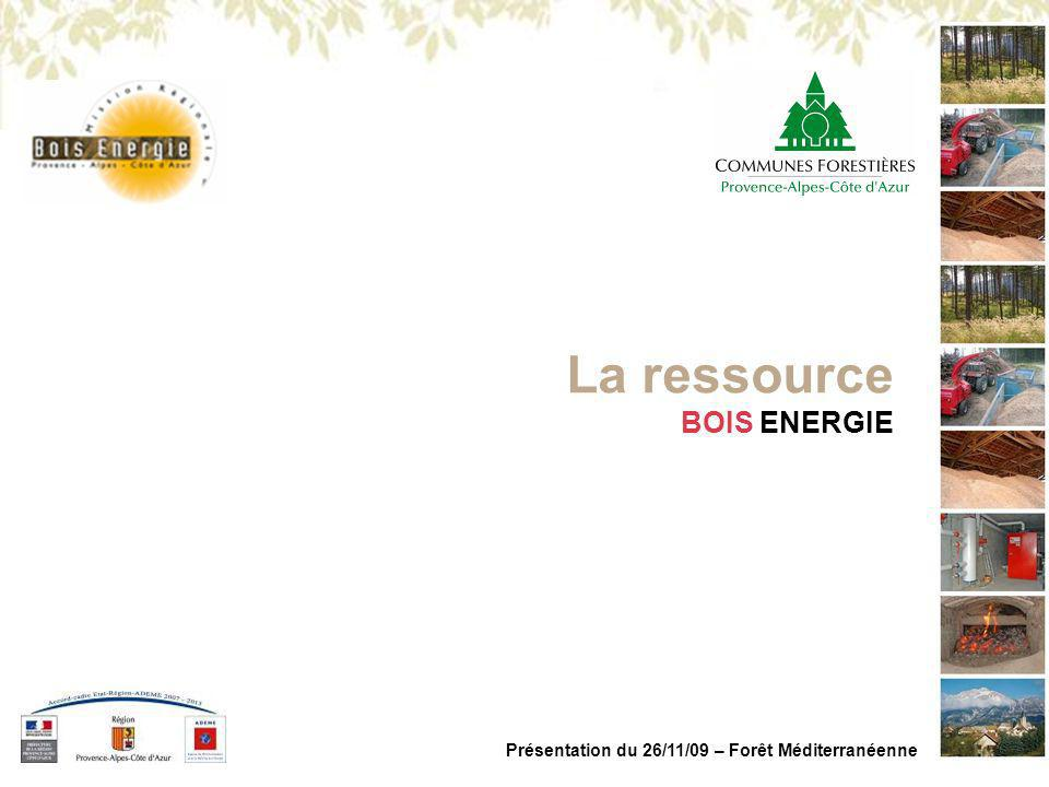 La ressource BOIS ENERGIE