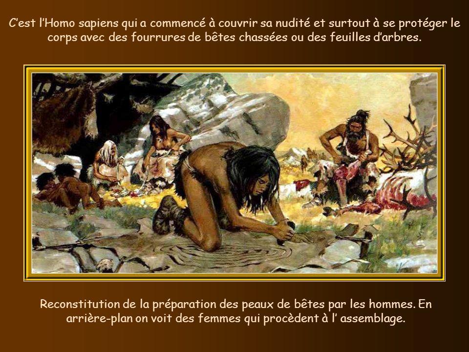 C'est l'Homo sapiens qui a commencé à couvrir sa nudité et surtout à se protéger le corps avec des fourrures de bêtes chassées ou des feuilles d'arbres.