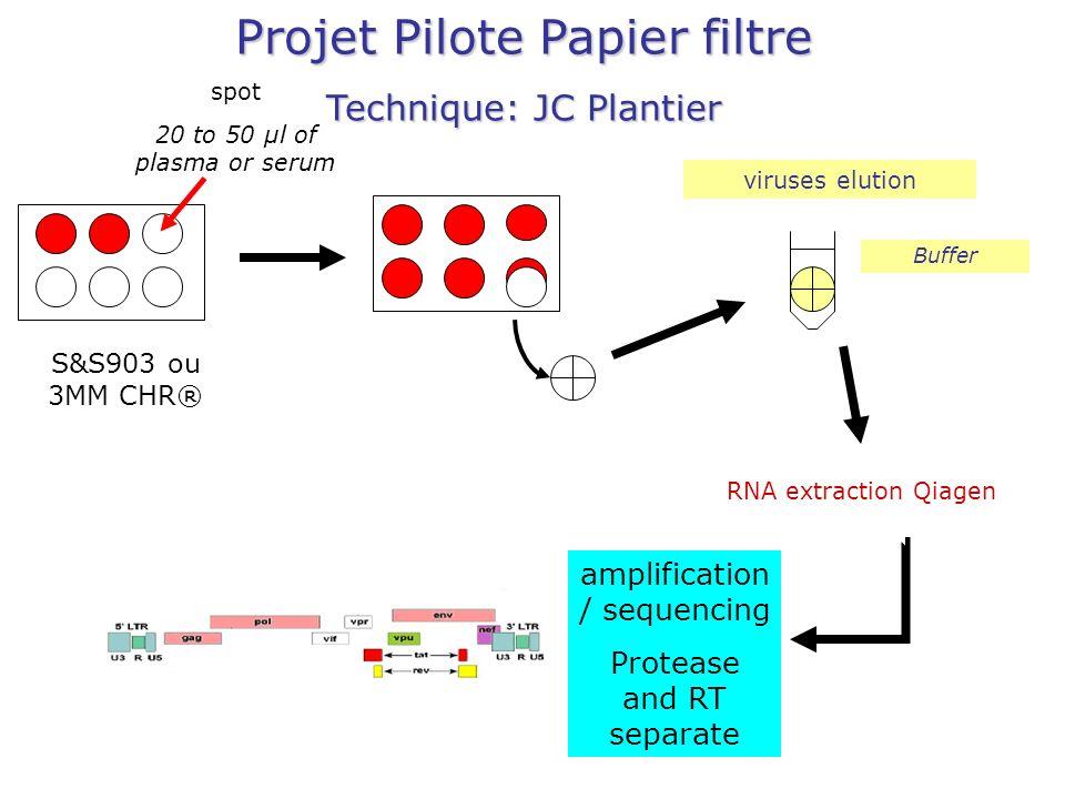 Projet Pilote Papier filtre