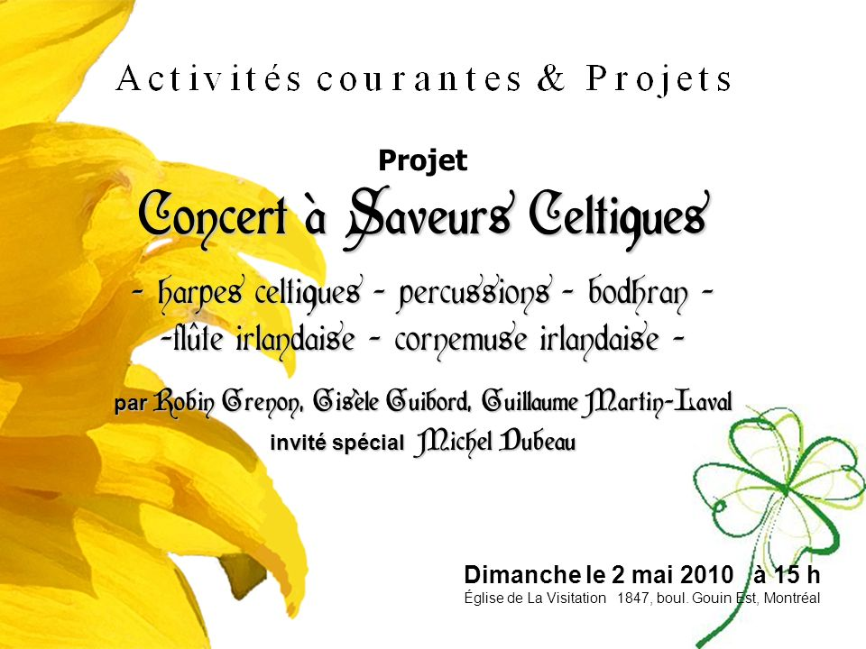 Concert à Saveurs Celtiques