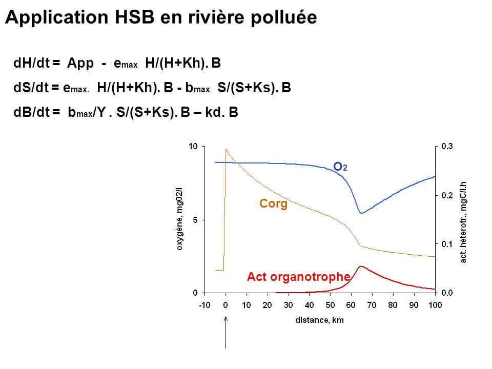 Application HSB en rivière polluée