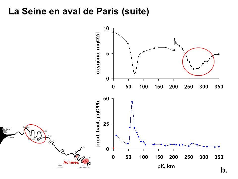 La Seine en aval de Paris (suite)