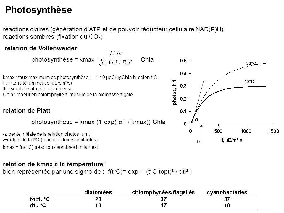 Photosynthèse réactions claires (génération d'ATP et de pouvoir réducteur cellulaire NAD(P)H) réactions sombres (fixation du CO2)