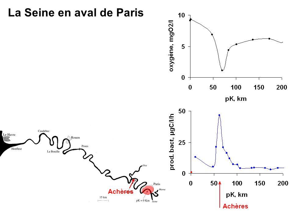 La Seine en aval de Paris