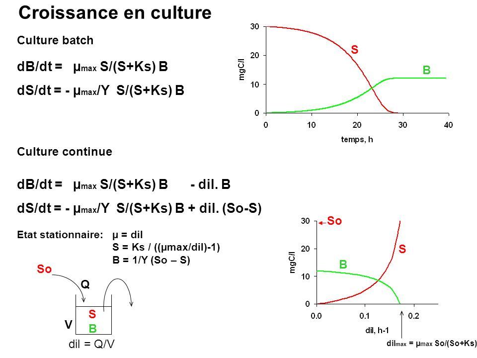 Croissance en culture dB/dt = µmax S/(S+Ks) B