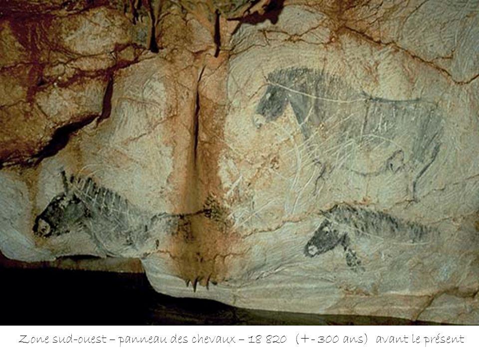 Zone sud-ouest – panneau des chevaux – 18 820 (+- 300 ans) avant le présent