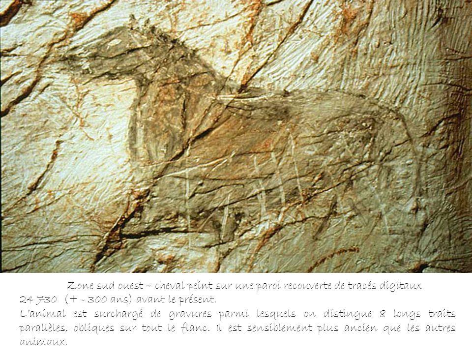 Zone sud ouest – cheval peint sur une paroi recouverte de tracés digitaux