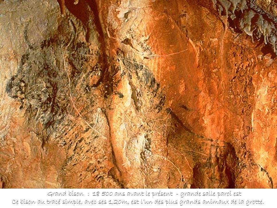 Grand bison : 18 500 ans avant le présent - grande salle paroi est