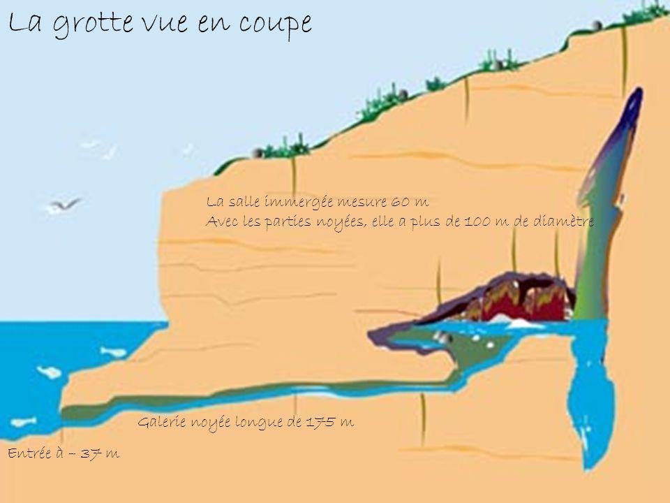 La grotte vue en coupe La salle immergée mesure 60 m