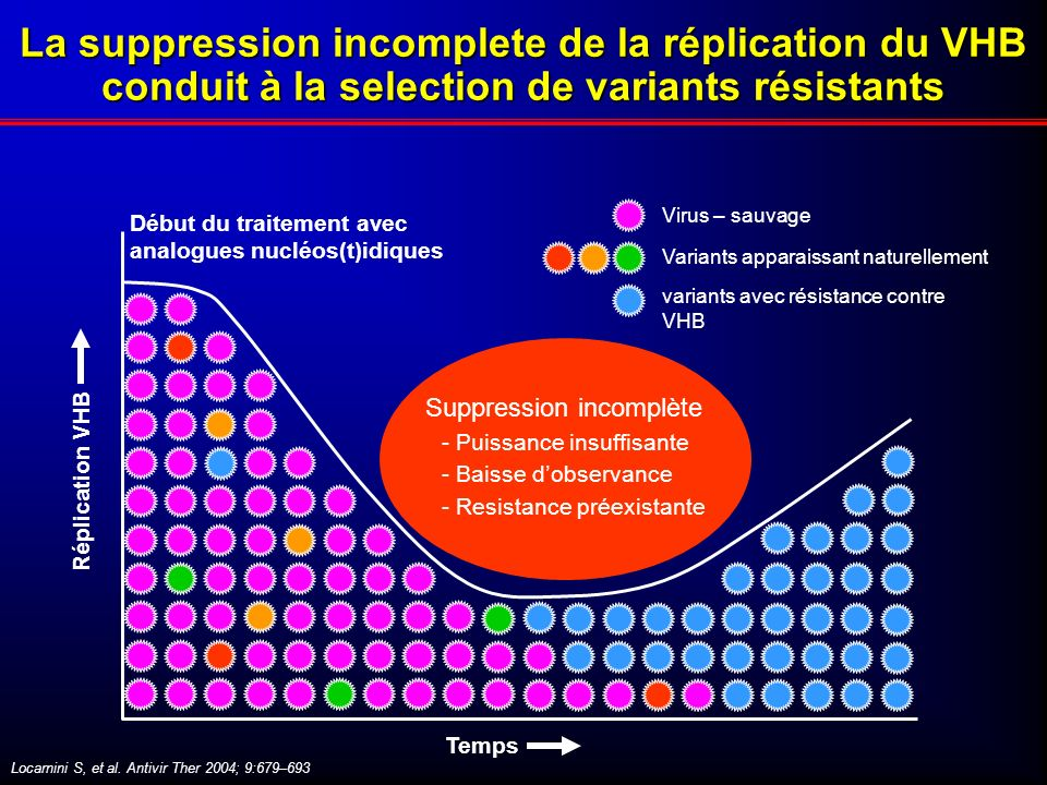 La suppression incomplete de la réplication du VHB conduit à la selection de variants résistants