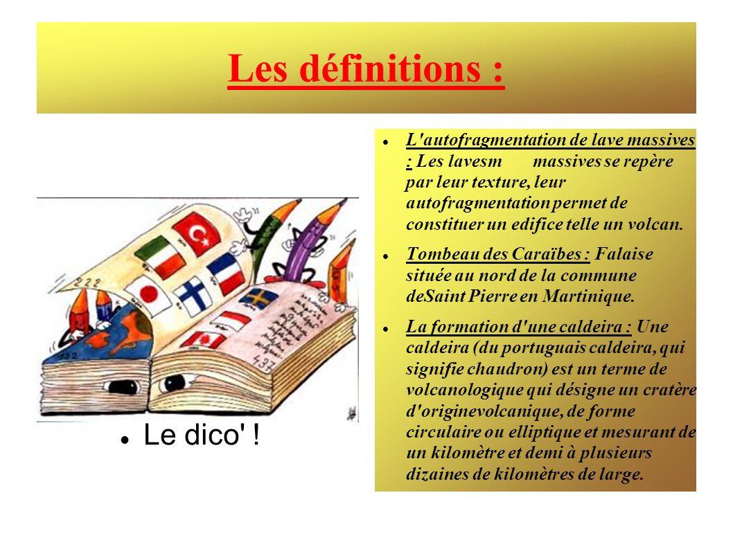 Les définitions : Le dico !