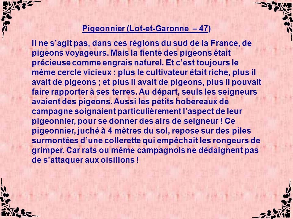 Pigeonnier (Lot-et-Garonne – 47)