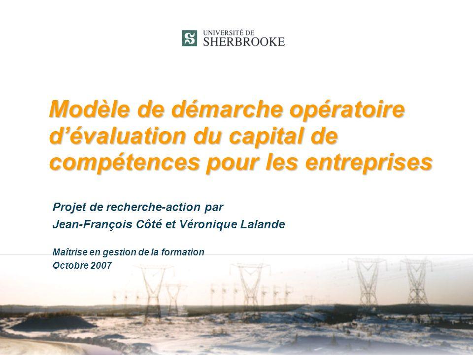 Modèle de démarche opératoire d'évaluation du capital de compétences pour les entreprises