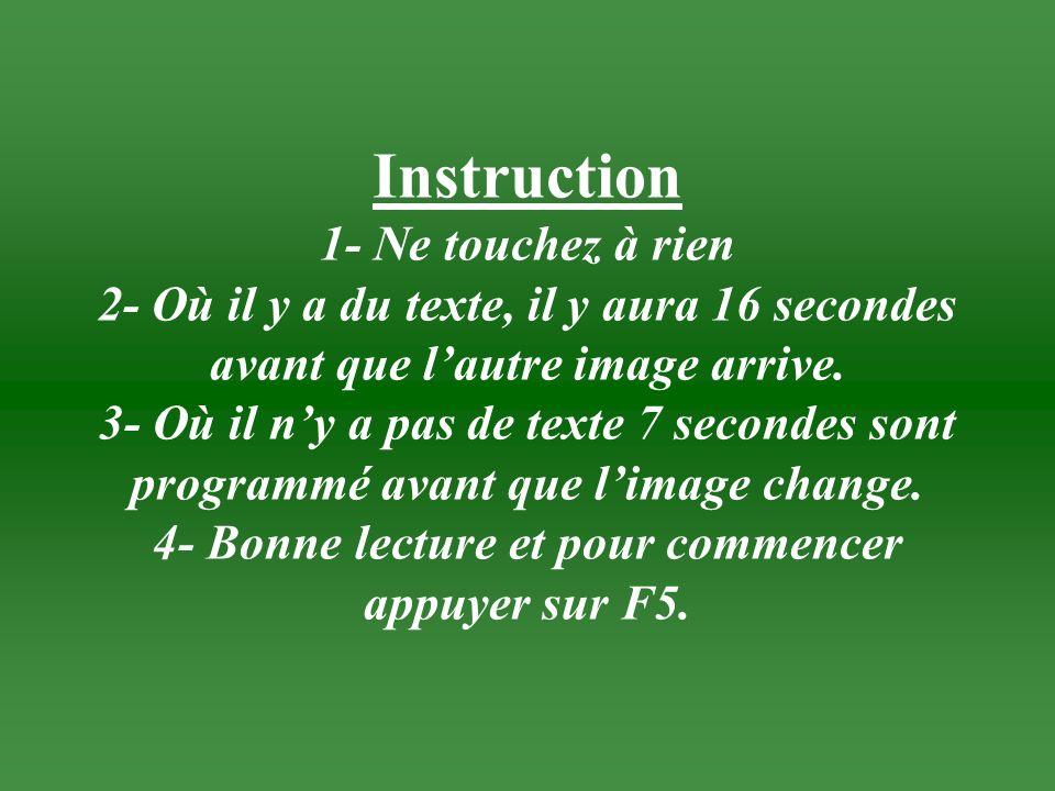 Instruction 1- Ne touchez à rien 2- Où il y a du texte, il y aura 16 secondes avant que l'autre image arrive.