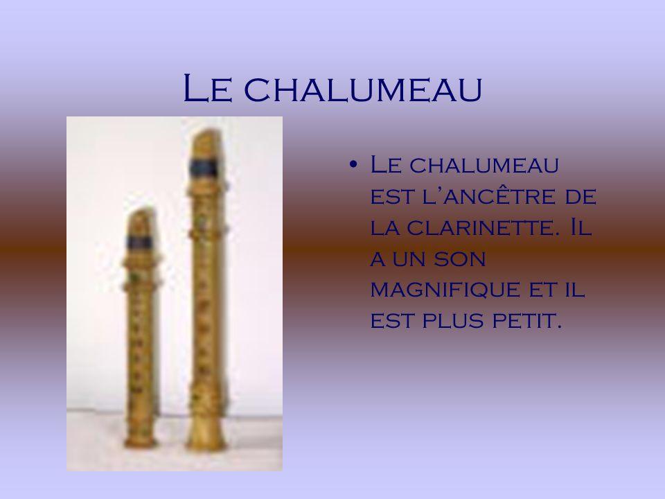 Le chalumeau Le chalumeau est l'ancêtre de la clarinette.