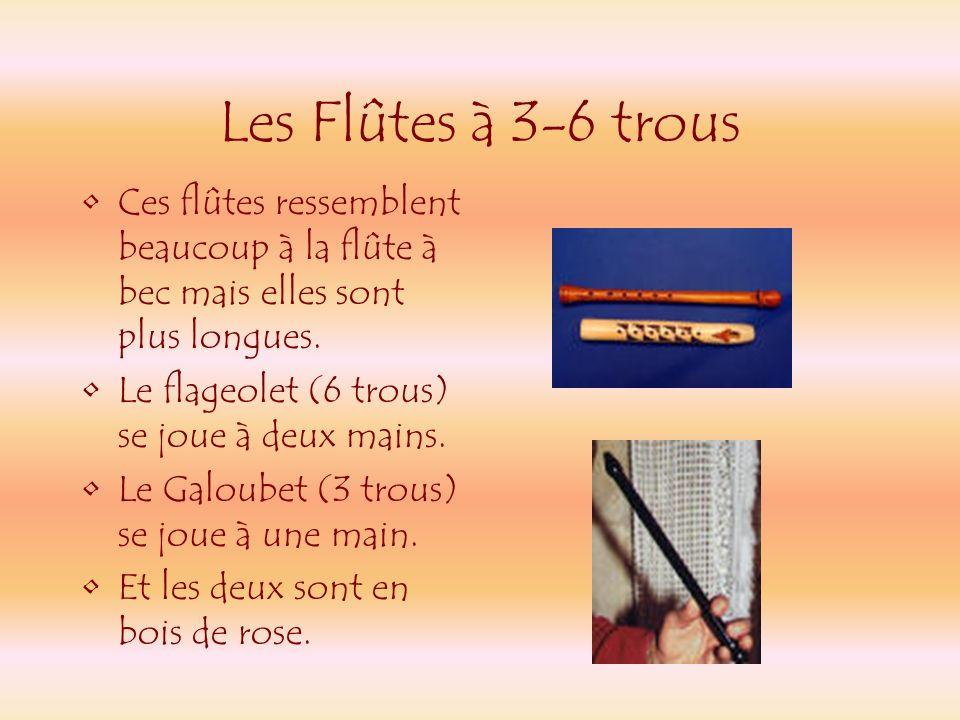 Les Flûtes à 3-6 trous Ces flûtes ressemblent beaucoup à la flûte à bec mais elles sont plus longues.
