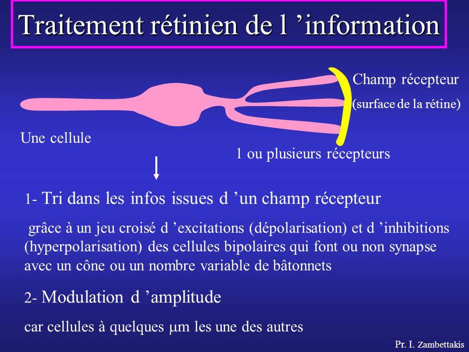 Traitement rétinien de l 'information