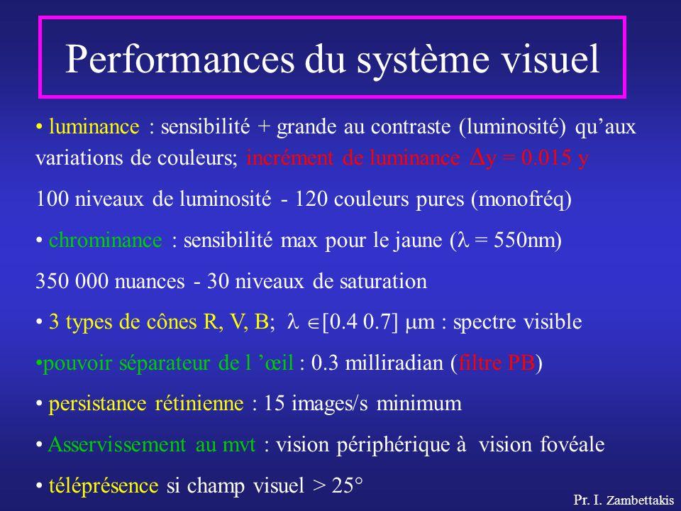 Performances du système visuel