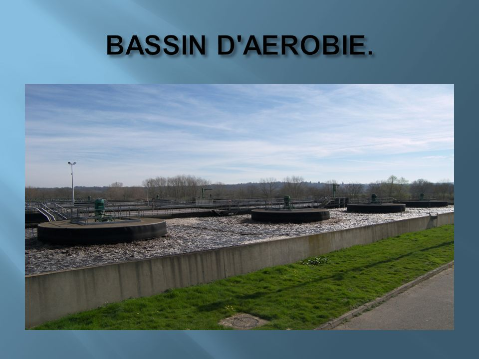 BASSIN D AEROBIE.