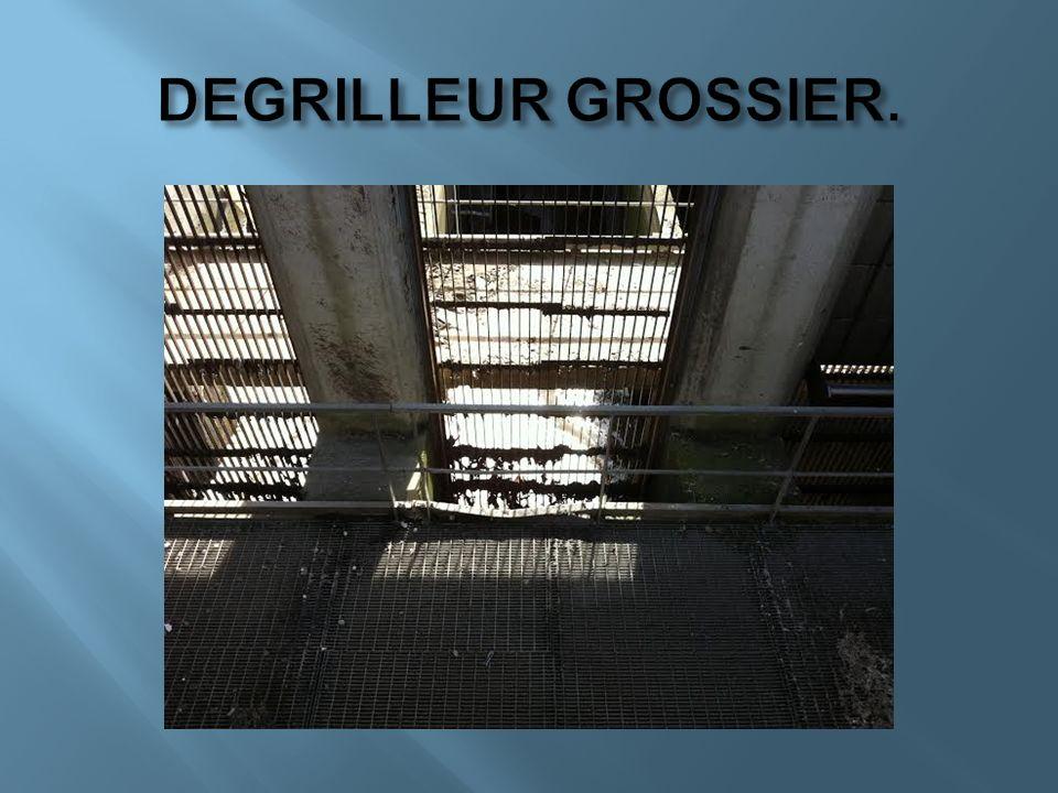 DEGRILLEUR GROSSIER.