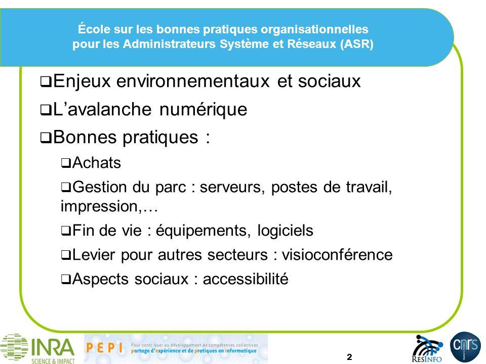 Enjeux environnementaux et sociaux L'avalanche numérique