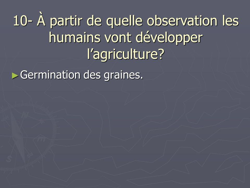 10- À partir de quelle observation les humains vont développer l'agriculture