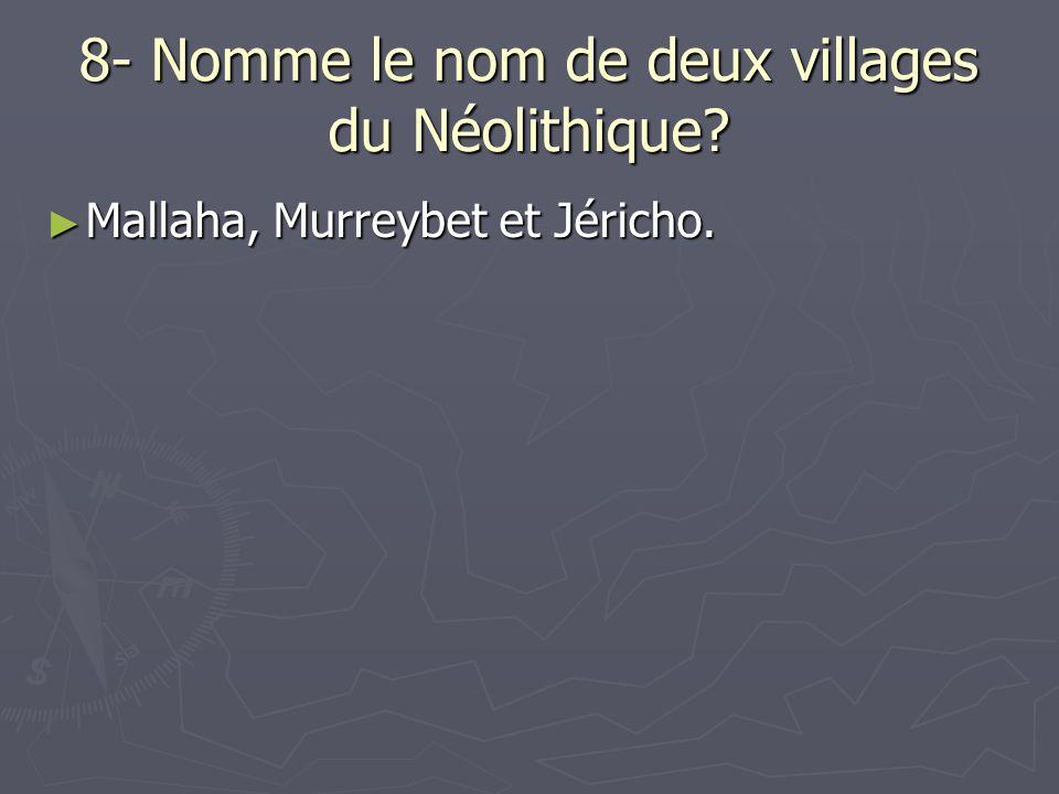 8- Nomme le nom de deux villages du Néolithique