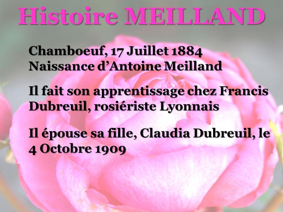Histoire MEILLAND Chamboeuf, 17 Juillet 1884
