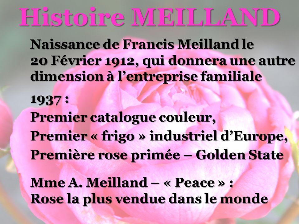Histoire MEILLAND Naissance de Francis Meilland le 20 Février 1912, qui donnera une autre dimension à l'entreprise familiale.