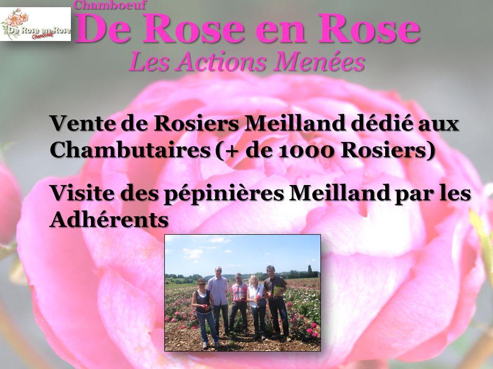 De Rose en Rose Les Actions Menées