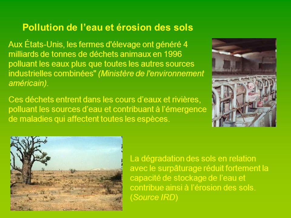 Pollution de l'eau et érosion des sols