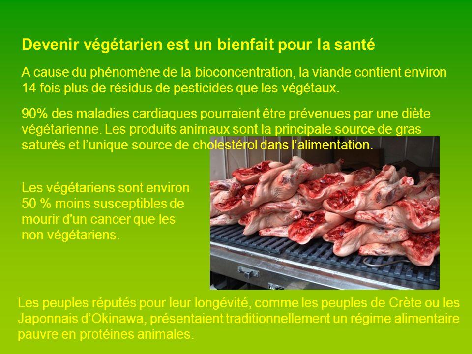 Devenir végétarien est un bienfait pour la santé