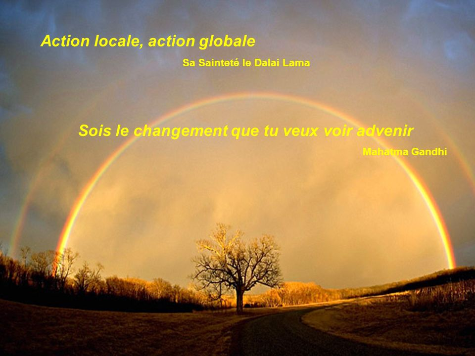 Action locale, action globale