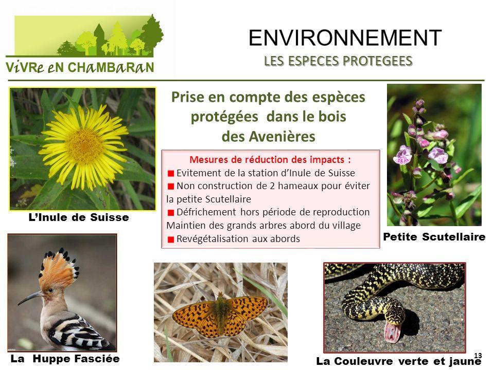 ENVIRONNEMENT LES ESPECES PROTEGEES. Prise en compte des espèces protégées dans le bois des Avenières.