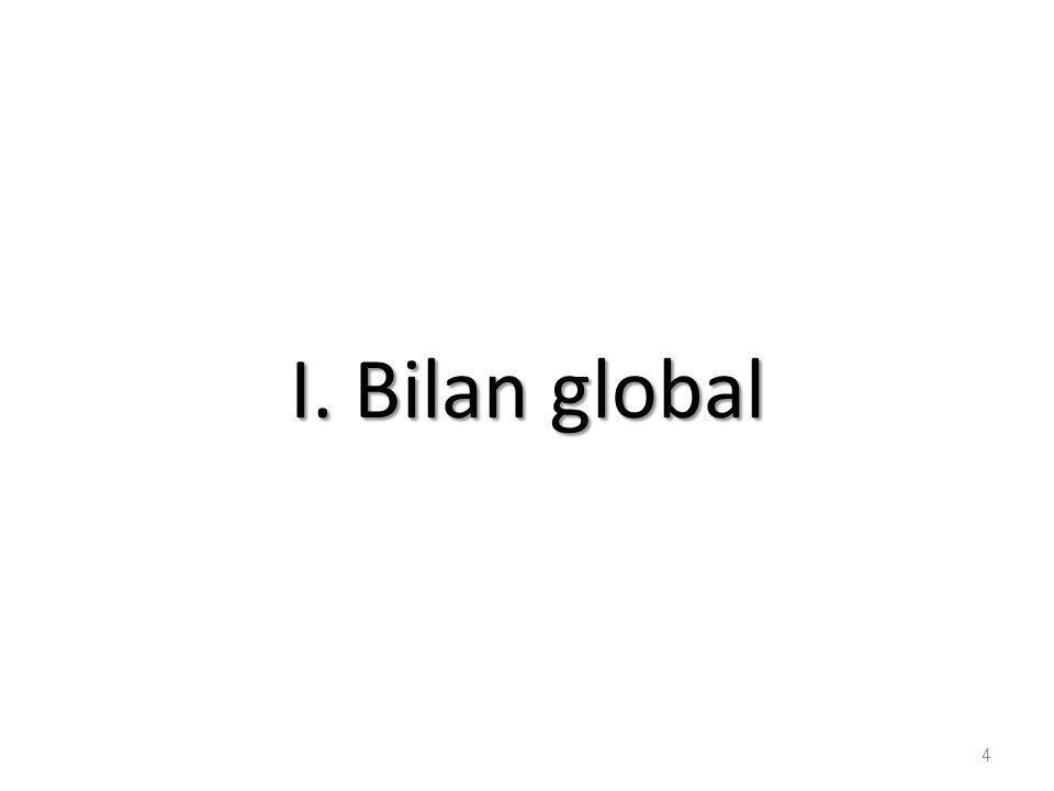 I. Bilan global