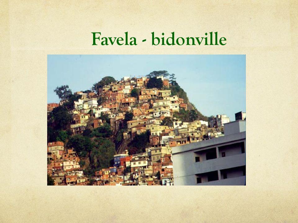 Favela - bidonville