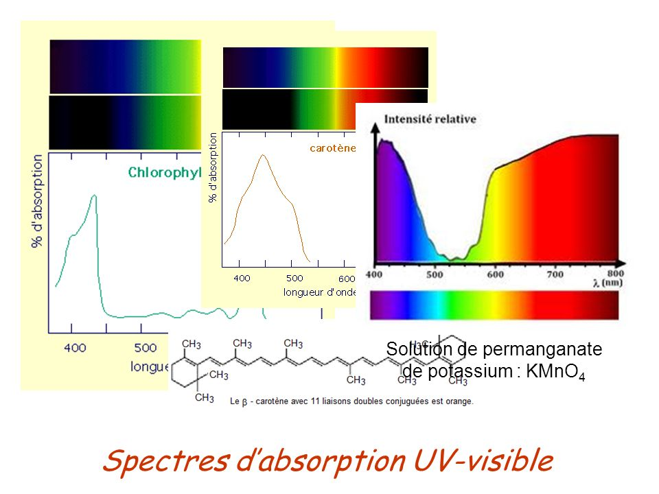 Spectres d'absorption UV-visible