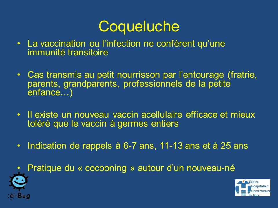 Coqueluche La vaccination ou l'infection ne confèrent qu'une immunité transitoire.