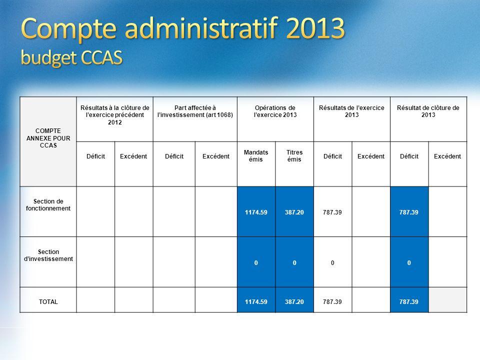 Compte administratif 2013 budget CCAS