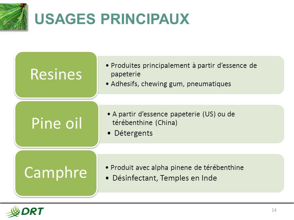 Resines Pine oil Camphre USAGES PRINCIPAUX Détergents