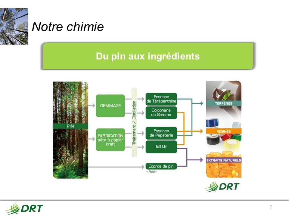 Notre chimie Du pin aux ingrédients