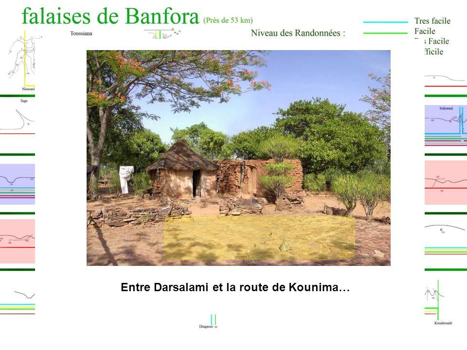 Entre Darsalami et la route de Kounima… Entre Péni et Sokorani…