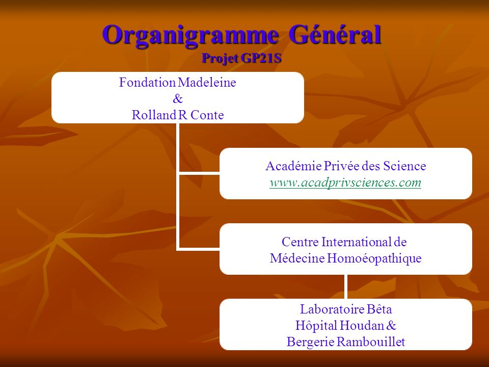 Organigramme Général Projet GP21S