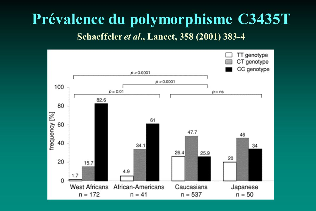 Prévalence du polymorphisme C3435T